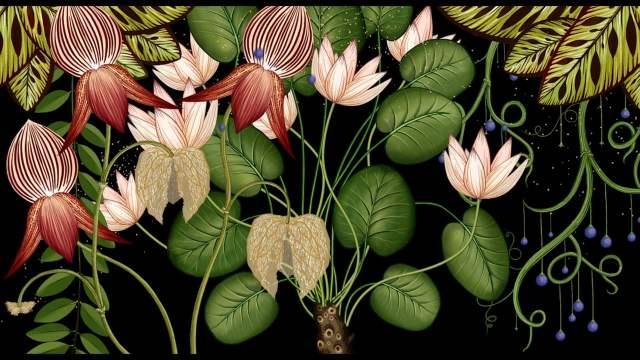 katie-scott-botanicum